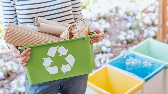 紙ごみを適切なリサイクルボックスに分別