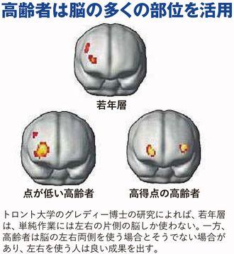高齢者は脳の多くの部位を活用