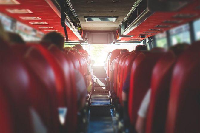 バスの後部座席からの眺め