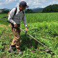 安易にジャムを作っても農業では食えない