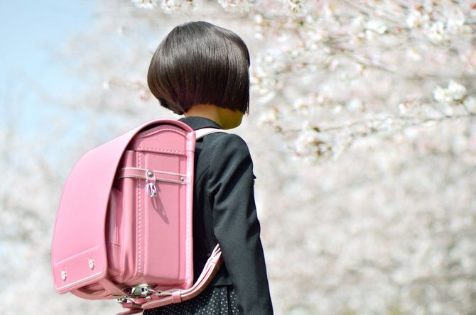 新一年生の女の子の後ろ姿と桜