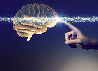 脳科学で分類