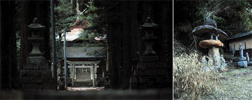 映画にも登場する湯野神社。大ケヤキから続く参道は杉に囲まれ、古から続く荘厳な雰囲気を味わうことができる。鳥居の横には「砂の器」の石碑も(左)。「亀嵩」には古くからの集落が残る。町角に立つ地蔵(右)。