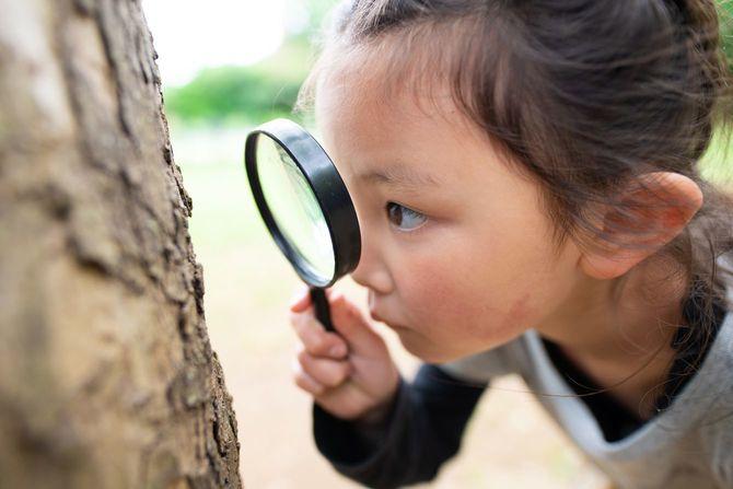 虫眼鏡で木を見ている女の子