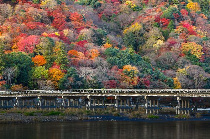 Autumn in Kyoto Arashiyama