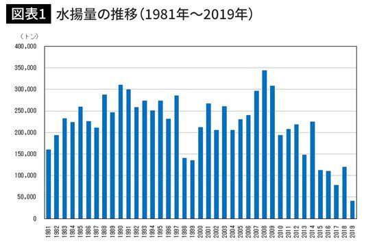 水揚量の推移(1981年~2019年)