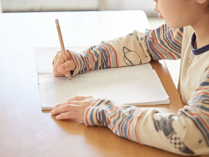 宿題をしている小学生