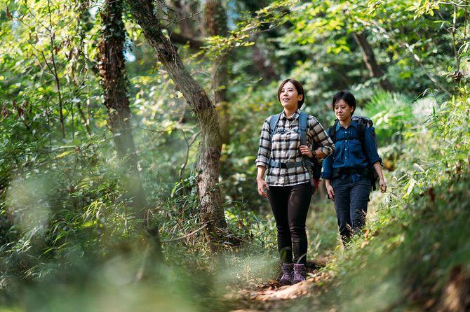 自然の中で一緒にハイキング