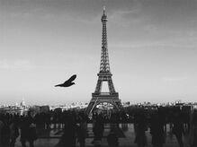 美意識と思想の国、フランスはなぜテロに狙われるのか