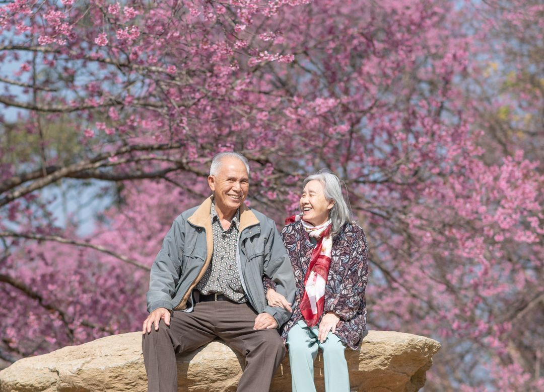 恋愛の神「60歳以降の男女に友情は成立しない」 60代女性の不倫は珍しくない
