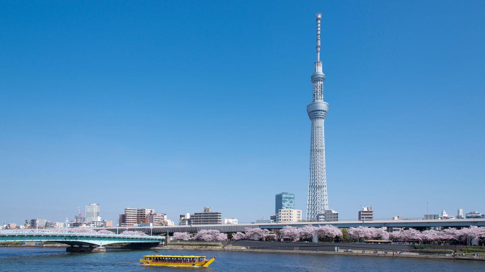 徳川家康が河川工事から手をつけた3つの理由 107の川がある東京の魅力とリスク