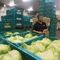 野菜の値段を「自分で」決めるための挑戦
