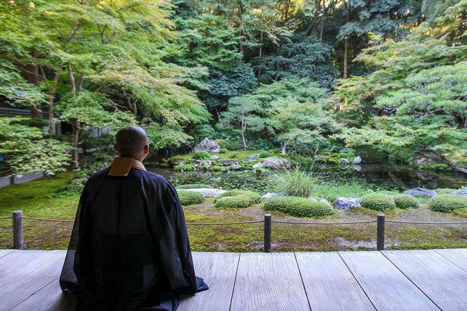 新鮮な緑の中で禅を行う仏教僧