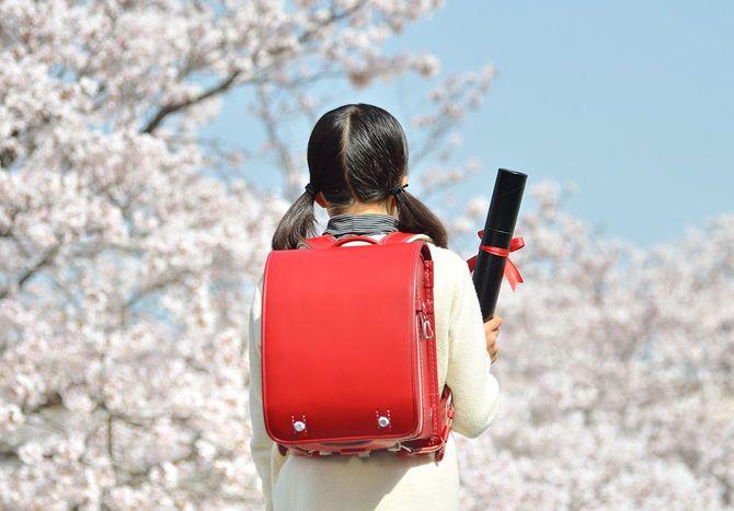 スクール小学生 (桜、卒業)