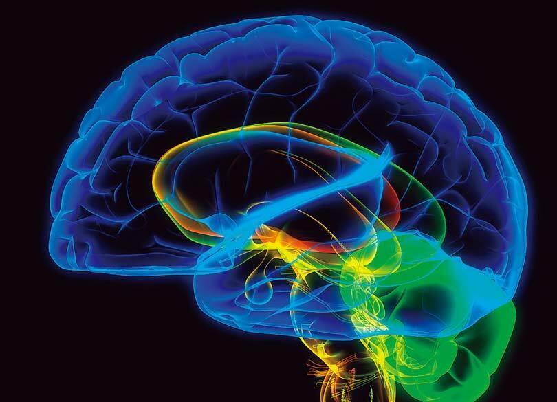 通勤電車内のスマホは脳を活性化させない 脳に効く最高の習慣 vs 最悪の習慣