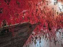 赤い糸と鍵に託した想い。アーティスト・塩田千春インタビュ――「第56 回ヴェネツィア・ビエンナーレ」【2】