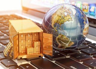 日米政府が交渉を「物品」に限定する狙い