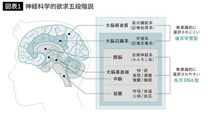 神経科学的欲求五段階説