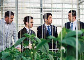 TPP成立でも、日本の農家は変わらない