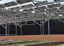 ソーラーシェアリング -農業問題とエネルギー問題を一挙解決
