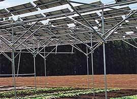 農業問題とエネルギー問題を一挙解決