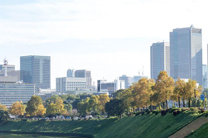 秋に東京中央市