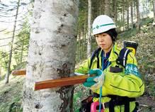 山の職人とともに生きる、女性現場監督