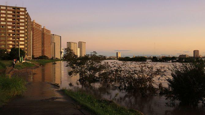 2019年10月13日に台風19号が大雨を伴った朝の多摩川下流域の風景