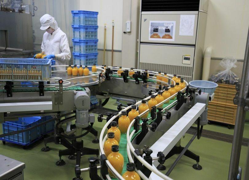 農家7戸が法人化。6次産業化によるみかんのビジネス化に成功