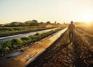 哲学者が田舎暮らしを熱狂的に勧めるワケ