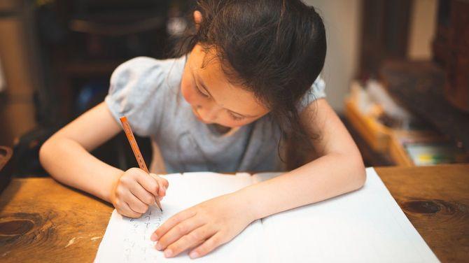 自宅で勉強している女の子