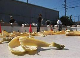 本当に人間は、バナナの皮で転ぶのか?