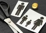 離婚後に「親権」を奪い合うのは日本だけ