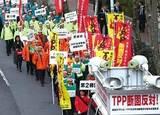 世界に負けない「日本の農業」改革私案