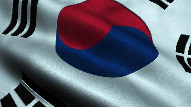 韓国国旗ハイディテール