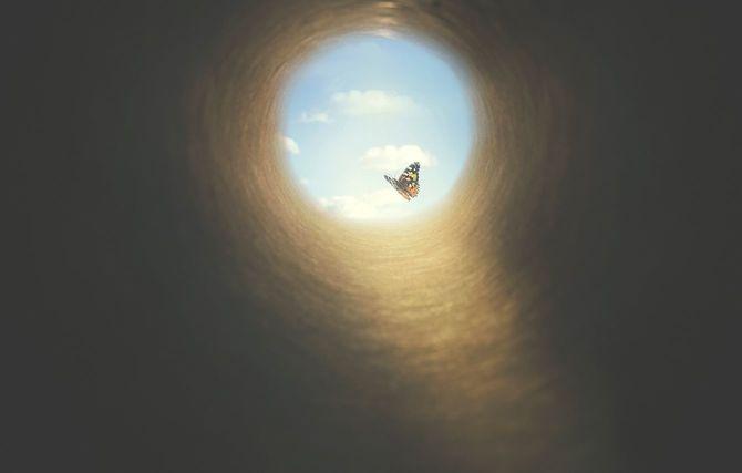 暗いトンネルの中にカラフルな蝶