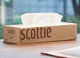 「スコッティ」は決められたルールよりも自分を信じてデザインしました