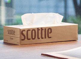 自分を信じてデザインした「スコッティ」