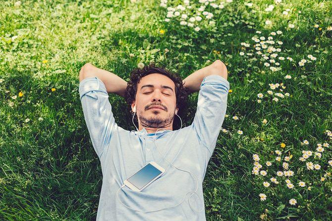 芝生で昼寝男