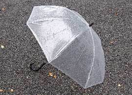 年間の傘販売本数、日本が世界一