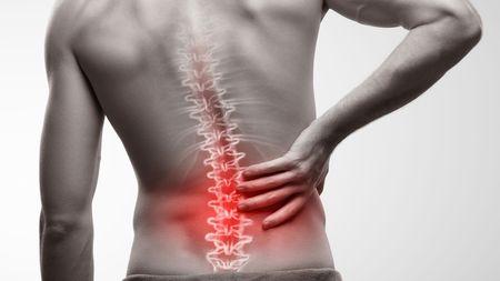 長引く腰痛は「脳の働き低下」という科学的研究 ストレスやうつ、不安が引き起こす | PRESIDENT Online(プレジデントオンライン)