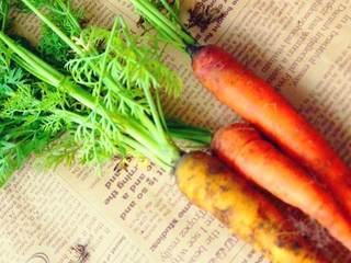 冬の美容対策には、「根菜」使い分けを!