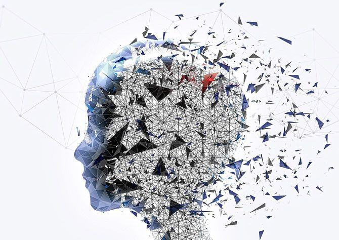 人の頭部のイメージ図