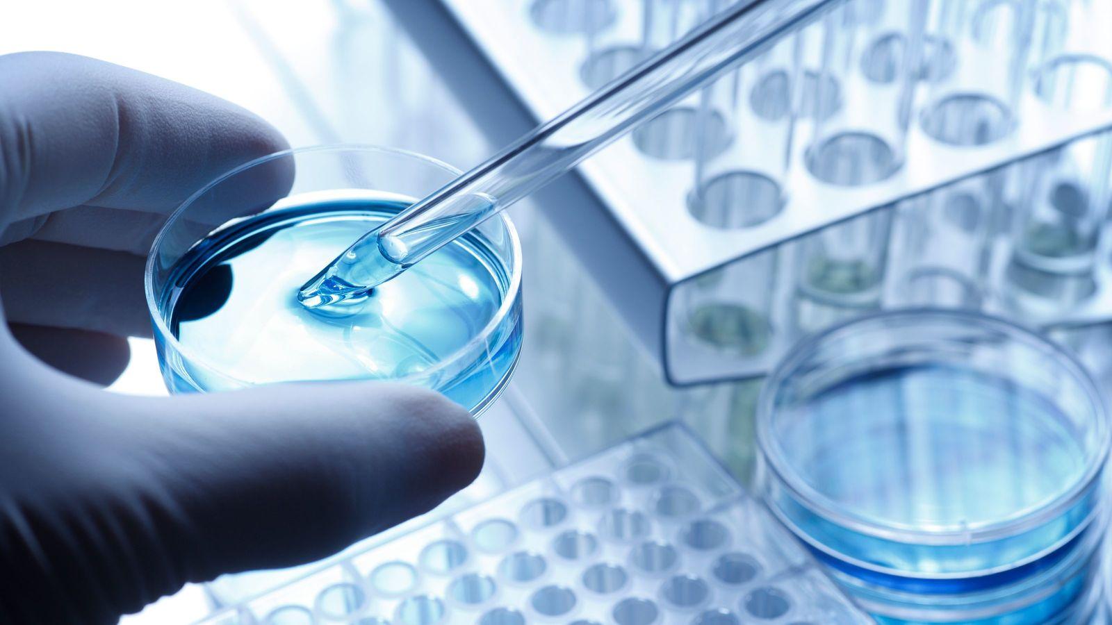 史上最年少の大学教授が狙う「多臓器一括再生」 26歳で「ミニ肝臓」の開発に成功
