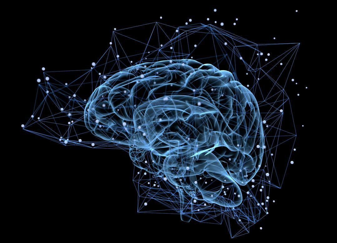 高学歴なのにダメな人は、なぜダメなのか キーワードは「ネットワーク脳」