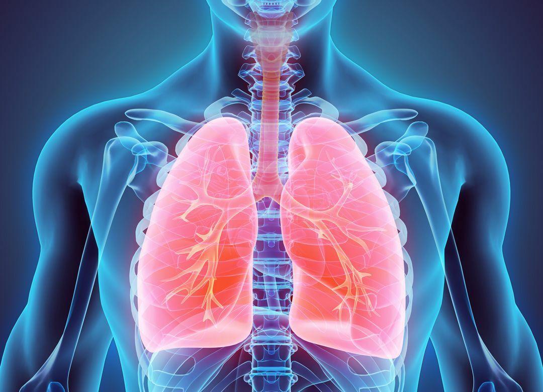 肺炎の原因となる加湿器の間違った使い方 空気中にカビを撒き散らす恐れが