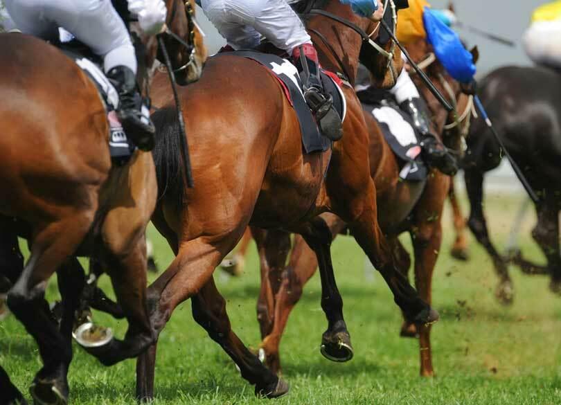 税務調査される売買額・損得額の境界線 競馬配当は一時所得か雑所得か