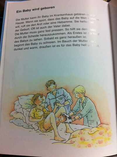 『Vom Liebhaben und Kinderkriegen: Mein erstes Aufklärungsbuch』より
