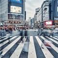 日本が5000万人国家になるとどうなるか