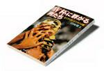 『W杯に群がる男たち』田崎健太著 新潮文庫 本体価格476円+税